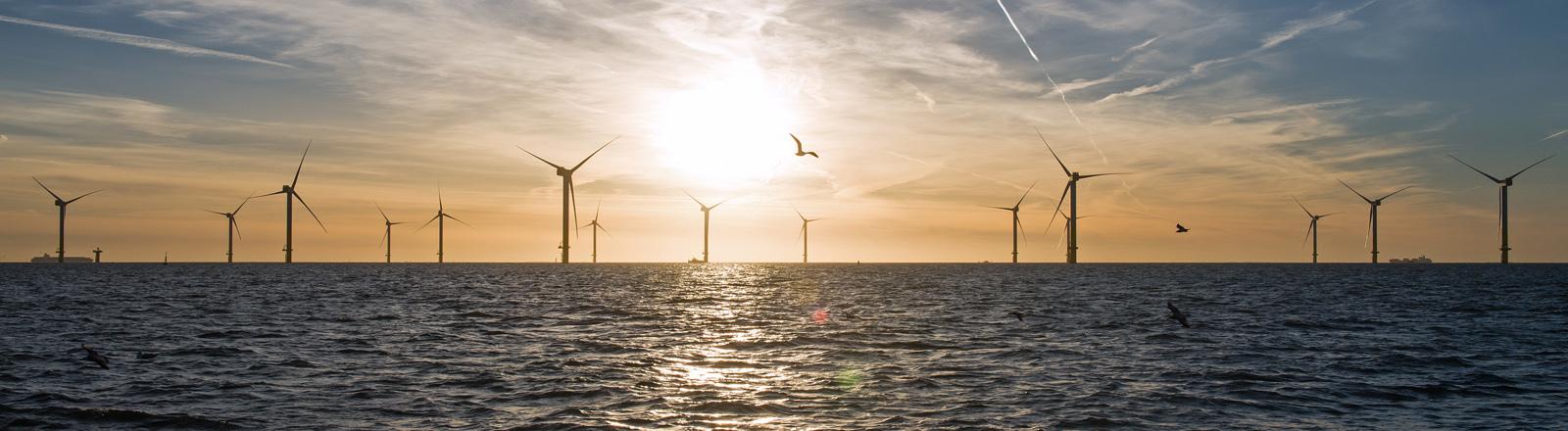 Offshore-Windpark vor Dorum/Niedersachsen