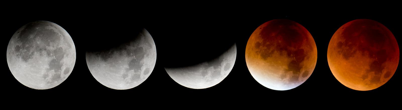 Die Phasen einer totalen Mondfinsternis in 21 Schritten von Vollmond über Verdunkelung und Blutmond wieder zurück zum Vollmond.