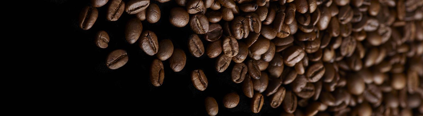 Kaffeebohnen.
