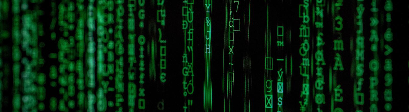 Grüne Zahlen laufen über einen schwarzen Bildschirm