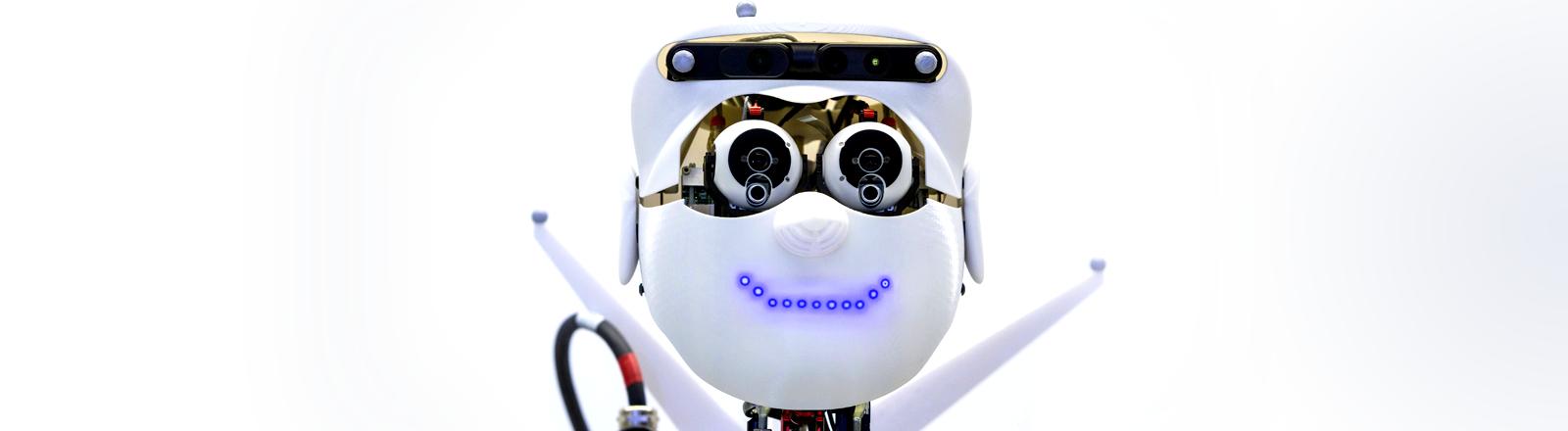 Roboter Apollo im Max-Planck-Institut für Intelligente Systeme in Tübingen, MPI