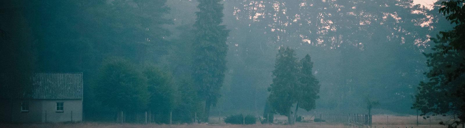 Auf dem ehemaligen Truppenübungsplatz bei Lübtheen gibt es einen großen Waldbrand. Rauch und ätzender Geruch steigen auf (02.07.2019)
