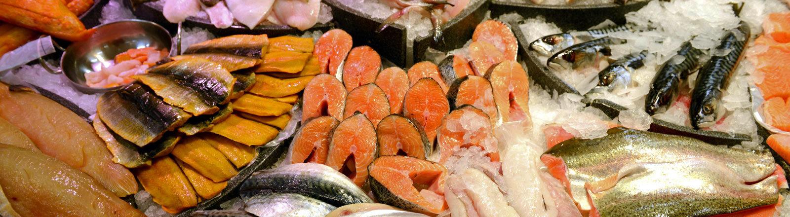 Fische in der Fischtheke eines Supermarktes