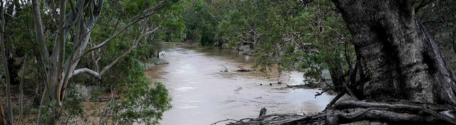 Regenfälle in Australien