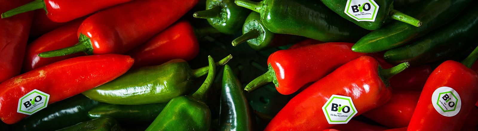 Rote und grüne Peperonies liegen nebeneinander; an einzelne klebt ein Bio-Siegel