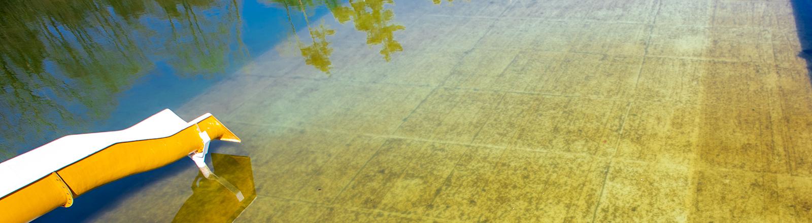 Blick auf ein Schwimmbecken im Freibad ohne Besucher; es scheint Herbst.