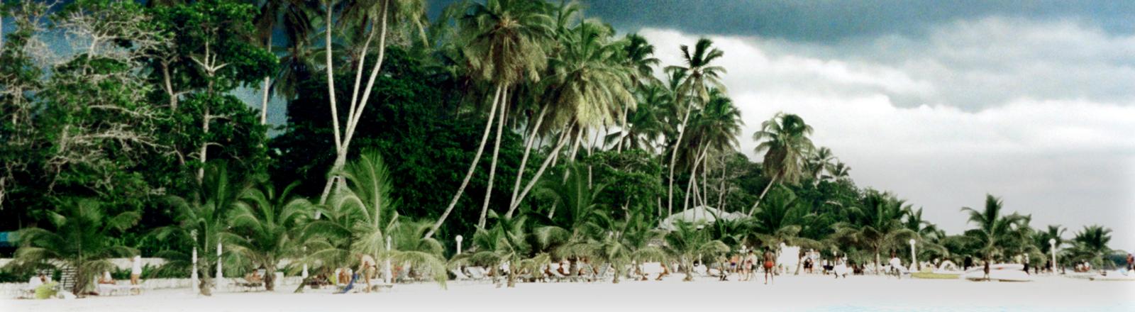 Karibikstrand mit Palmen und Gewitterfront