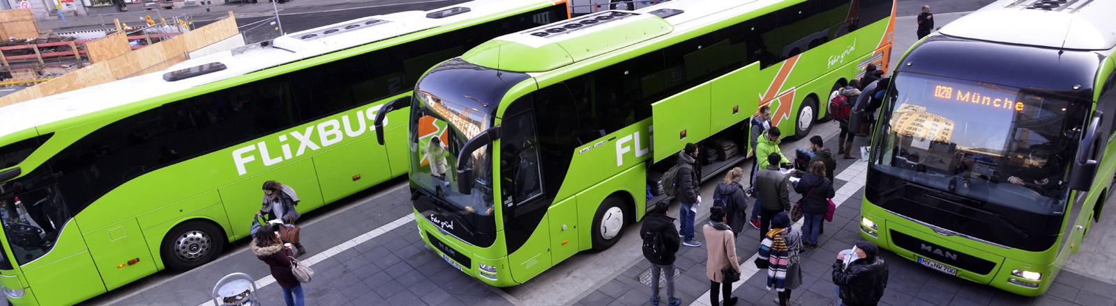 Busse von Flixbus