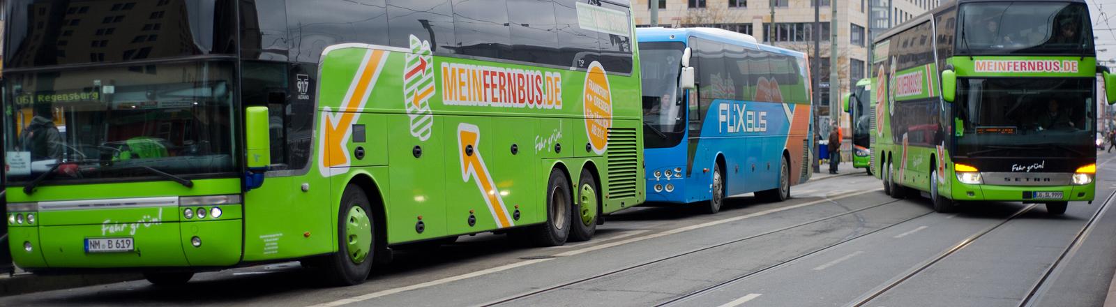 Fernbusse der Unternehmen Meinfernbus.de und Flixbus stehen am 10.02.2015 an den Haltestellen am Hauptbahnhof von Frankfurt am Main (Hessen).