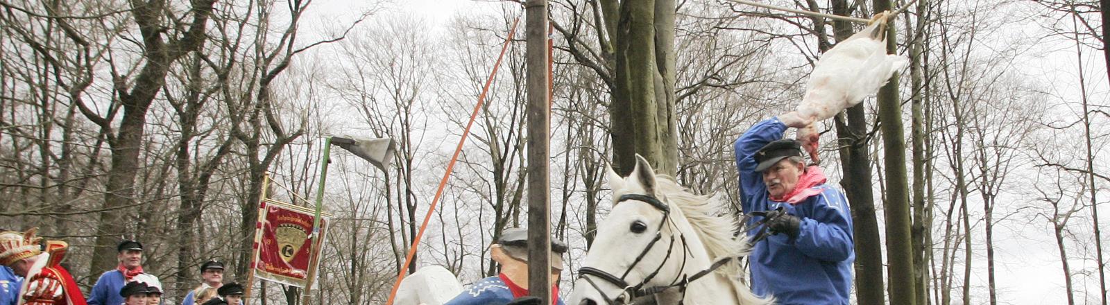 Ein Reiter versucht am Montag (23.02.2009) in Bochum vom Pferd aus einer toten Gans den Kopf abzureißen.