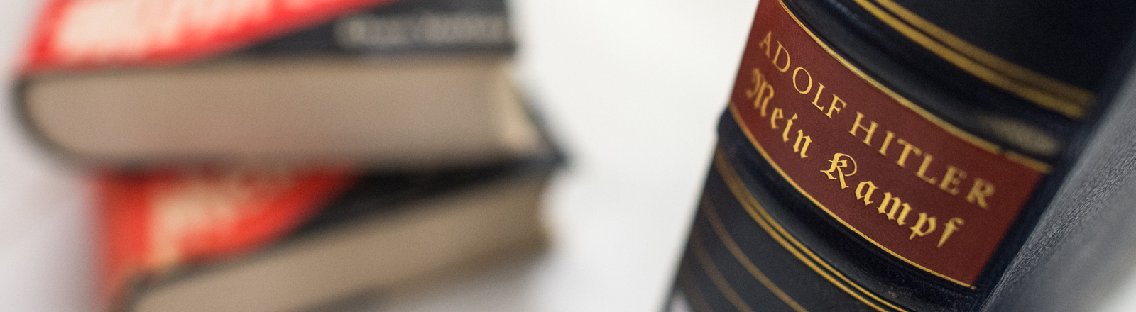 """Der Buchrücken einer Jubiläumsausgabe von Adolf Hitlers Schrift """"Mein Kampf"""", die zu Hitlers Geburtstag im Jahr 1939 erschienen war, ist am 11.12.2015 in den Räumen vom Institut für Zeitgeschichte (IfZ) in München (Bayern) vor weiteren Ausgaben aus den 1930er Jahren zu sehen."""