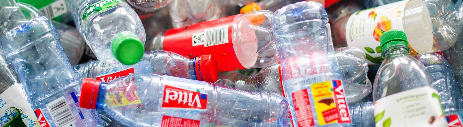 Leere Flaschen aus Plastik liegen am 01.09.2015 in Hamburg in einer Kiste.