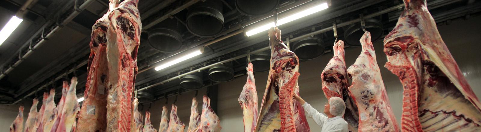 Ein Mitarbeiter schiebt am 31.03.2014 im Schlachthof der Firma Vion in Bad Bramstedt eine Rinderhälfte in einen Kühlraum.