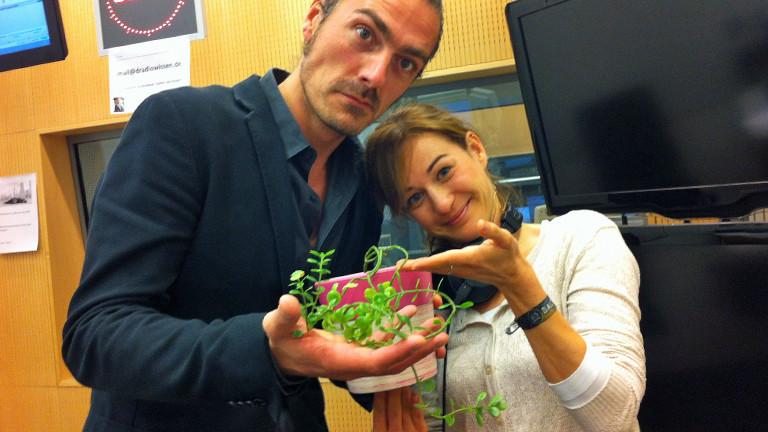 Am 01.09.2014 präsentieren Till Haase und Anna Kohn eine etwas krümelige Pflanze.