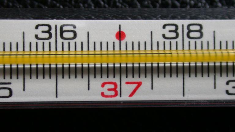 Ein Fieberthermometer