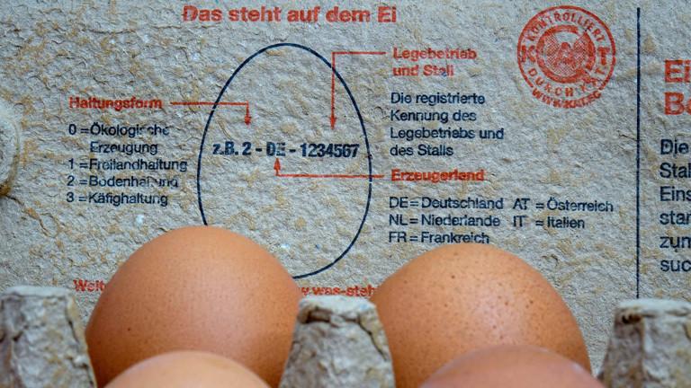 In einem Eierkarton liegen Eier. Auf dem Innendeckel steht eine Information zur Kennzeichnung der Eier; Foto: dpa