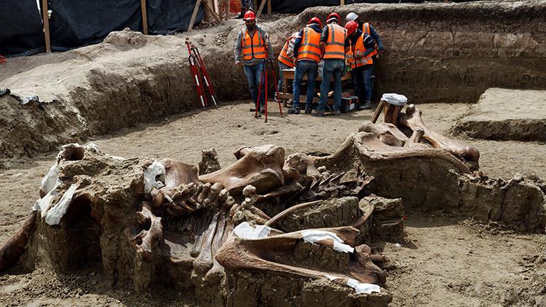 Am Fundort von über 200 Mammut-Skeletten in Mexiko: Vorne im Bild liegen mächtig große Knochen, hinten im Bild stehen Spezialisten mit Helm und Westen bekleidet (27.08.2020)