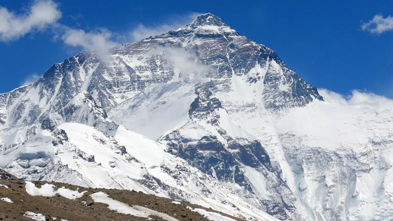 Wie Streifengänse es über den Himalaja schaffen