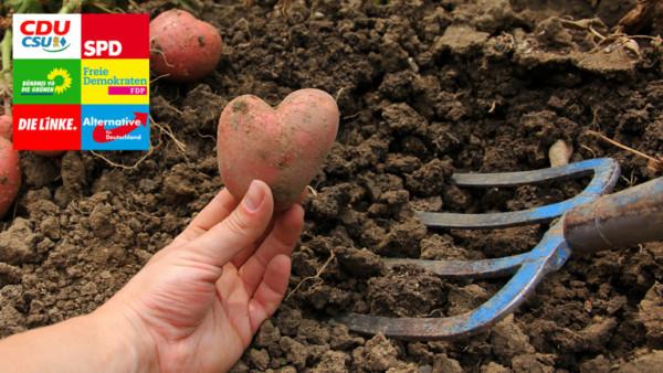 Eine Hand hält eine herzförmige Kartoffel in der Hand. Dahinter liegt Erde, in der eine Harke steckt.