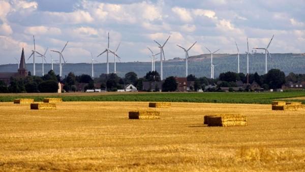 Ein Foto mit Grobianen (Windenergieanlagen) davor eine Wiese.