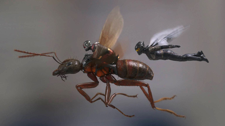 """Filmszene aus """"Ant-Man and the Wasp""""; beide fliegen in Miniaturgröße herum; Ant-Man fliegt auf einer Ameise."""