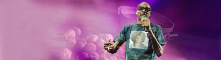 Snoop Dogg vor Kochtopf mit Brokkoli-Röschen (Collage)