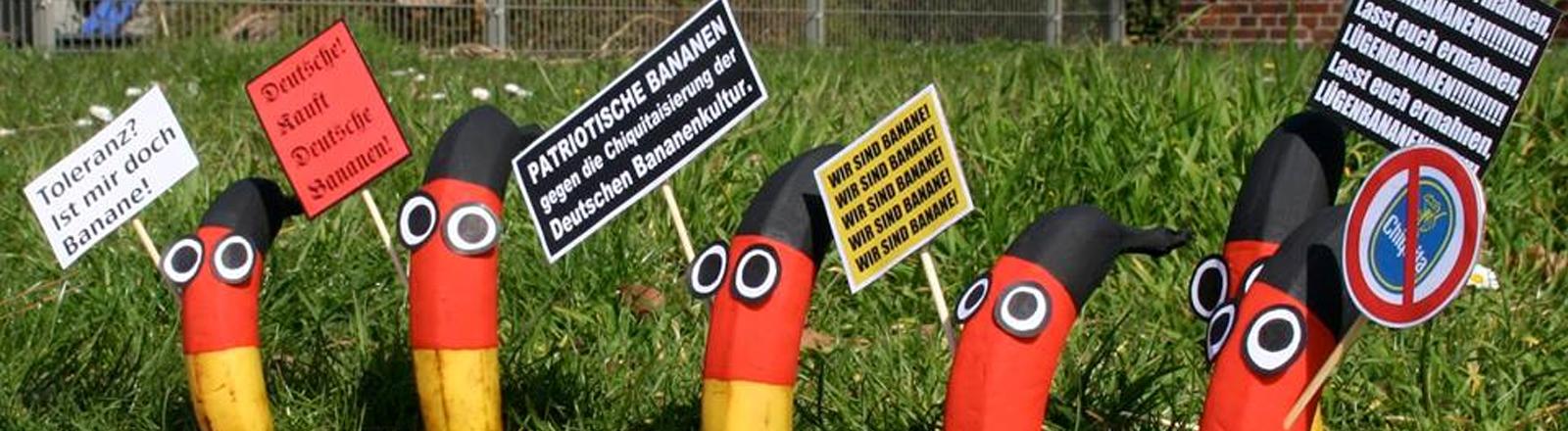 Bananen in Schwarzrotgold aufgestellt mit Plakaten als Persiflage auf die Pegida Proteste.