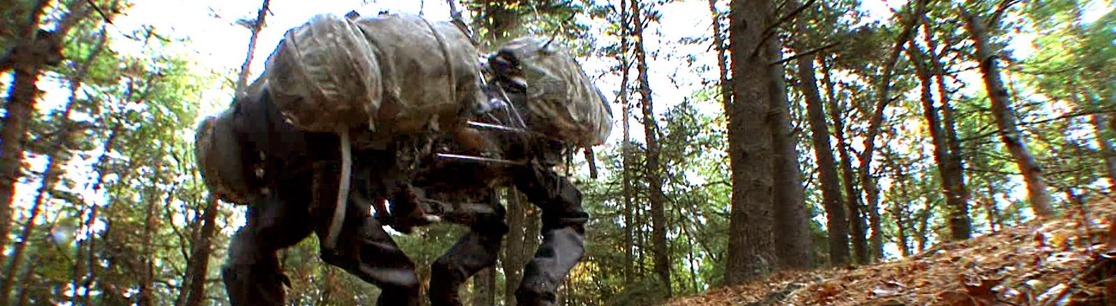 Der Roboterhund Alphadog im Wald