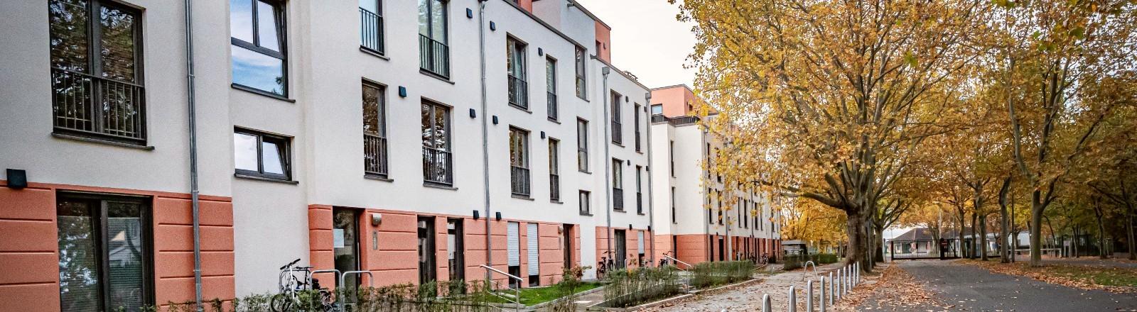 Eine Wohnsiedlung von Vonovia in Berlin-Reinickendorf.
