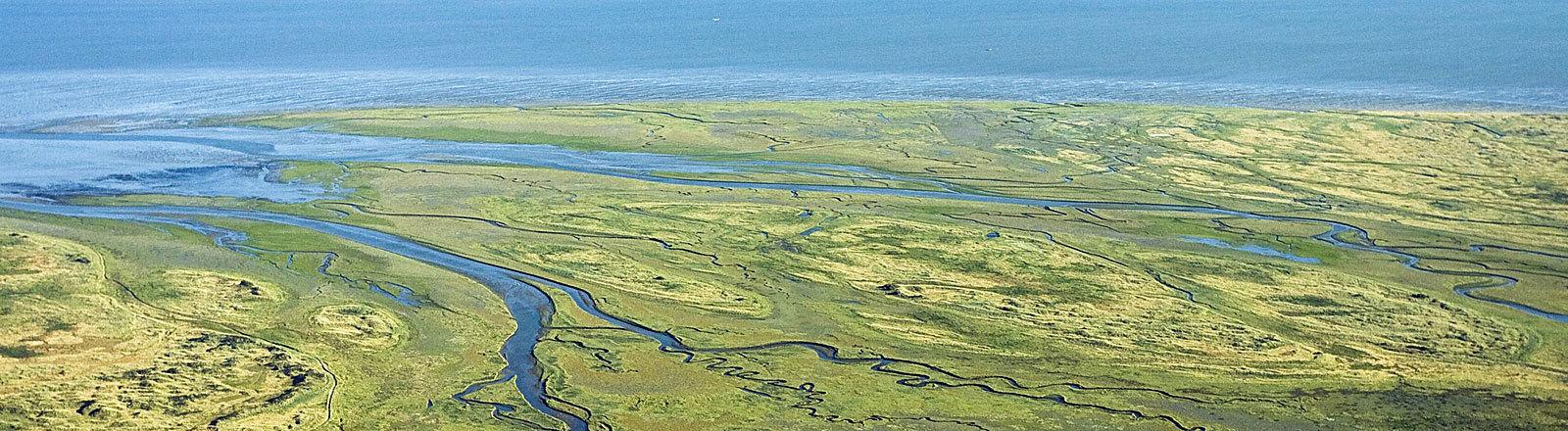 Küstenlandschaft Niederlande Wattenmeer