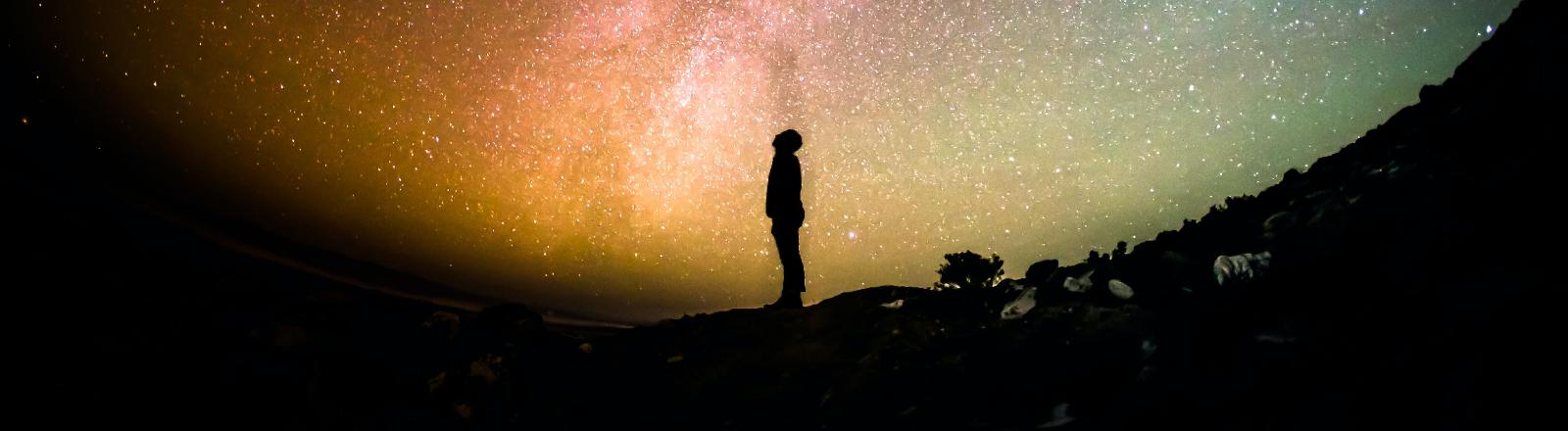Eine Person schaut in den Sternenhimmel.