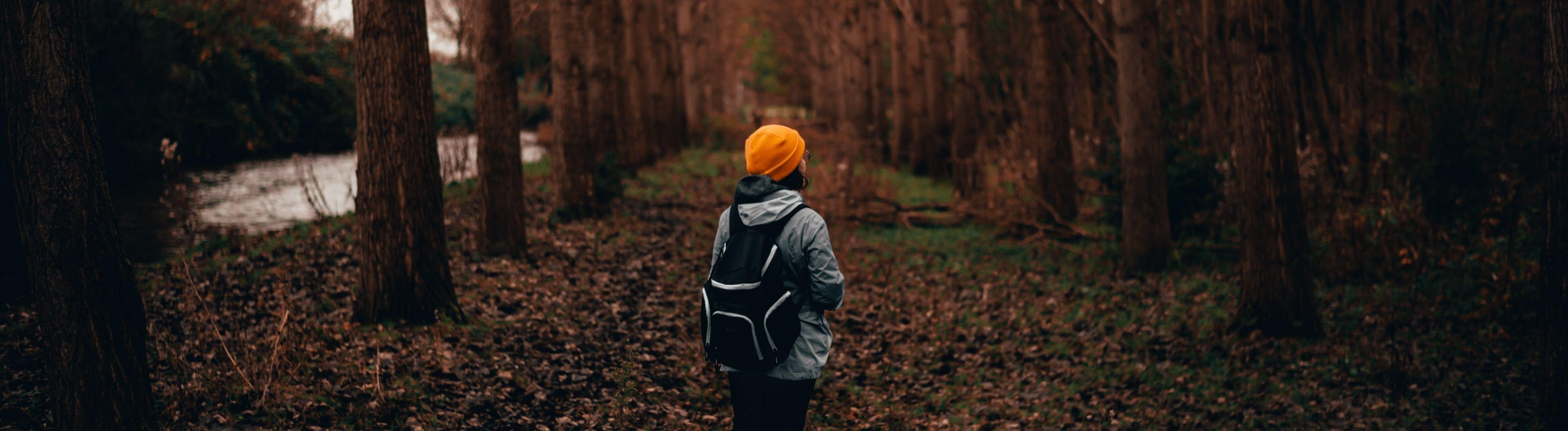 Person steht auf Laubboden in einem Wald.