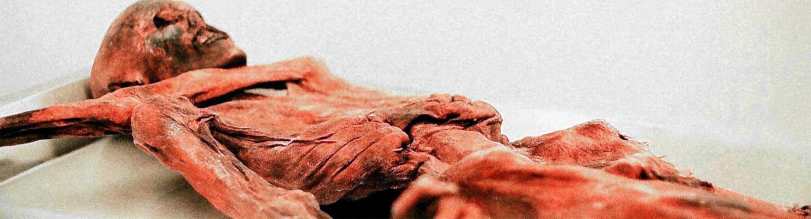 Das Bild zeigt eine Mumie.