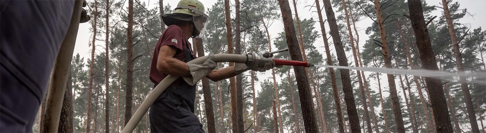 Feuerwehrmänner bekämpfen einen Waldbrand bei Treuenbrietzen