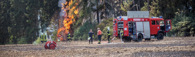 Feuerwehrleute bei der Bekämpfung eines Waldbrands im Weimarer Land am 3. Juli 2018