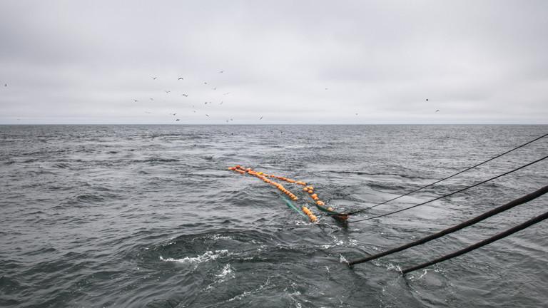 Verarbeitung produziert mehr Emission als Fang