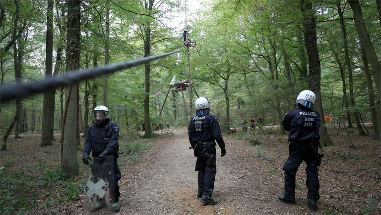 Bei der Räumung:  Polizisten und RWE-Mitarbeiter am 5. September 20118 im Hambacher Forst