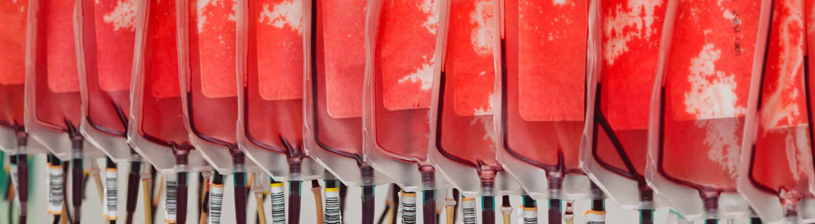 Blutkonserven von Blutspendern im Blutlabor.