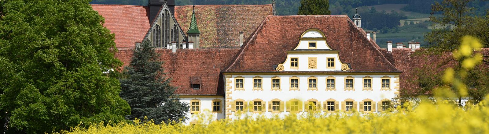 Die Schule Schloss Salem ist am 08.05.2014 (Baden-Württemberg) hinter einem Rapsfeld zu sehen. Foto: Felix Kästle/dpa