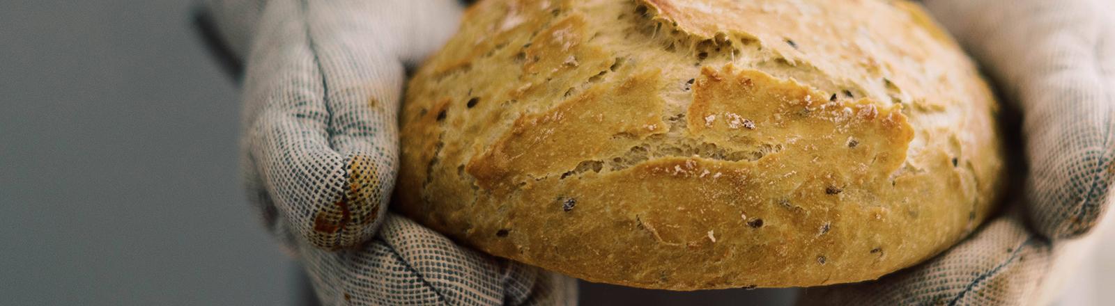 Ein Brot wird in den Händen gehalten