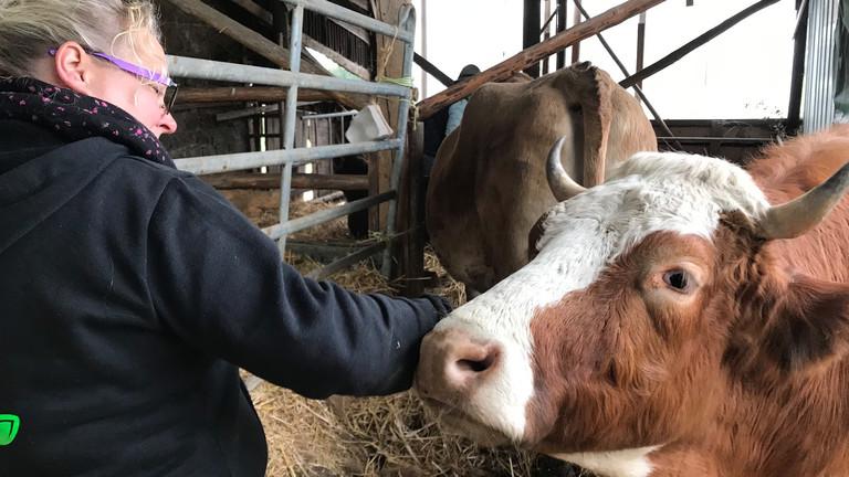 Melanie Eschmann-Rosenthal im Stall mit ihren Kühen