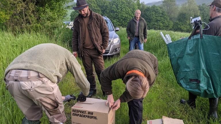 Ehrenamtliche packen Rehkitze in eine Kiste