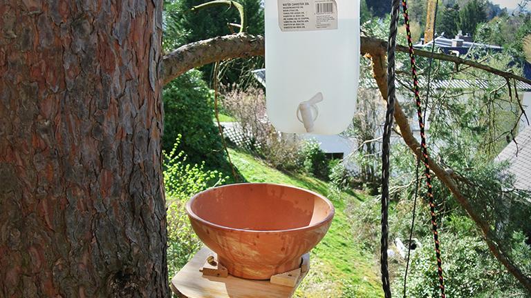 Ein Blumenkübel als Waschbecken und ein Wasserkanister