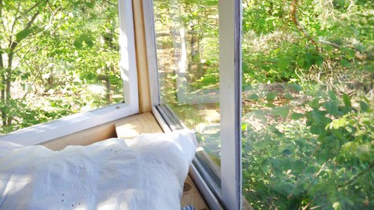 Blick aus einem Baumhausfenster