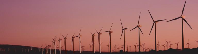 Ein Windpark im Sonnenuntergang