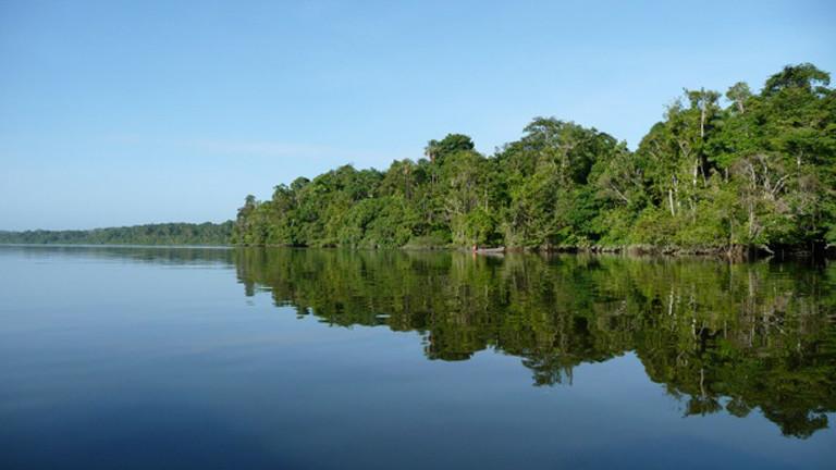 Der Fluss Oyapock.