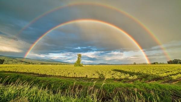 Ein doppelter Regenbogen über einem Feld