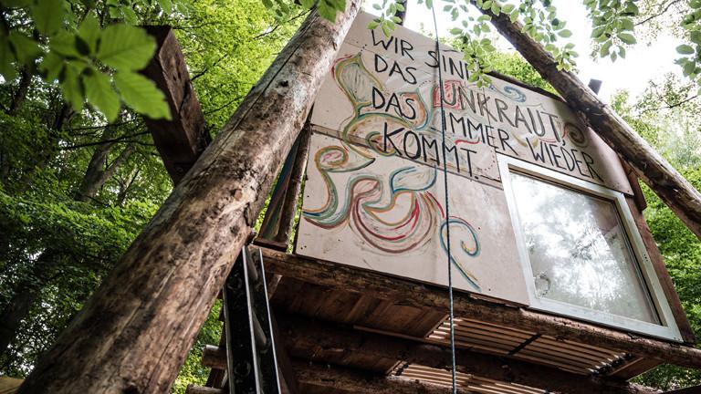Baumhaus im besetzten Dannenröder Wald Tripod im Wald mit Malerei: Wir sind das Unkraut das immer wieder kommt.