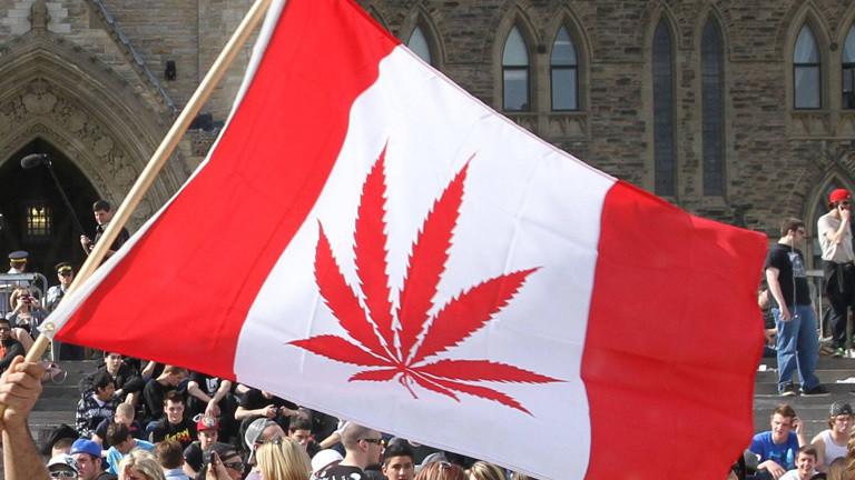 Eine kanadische Flagge mit Cannabis- statt Ahorn-Blatt