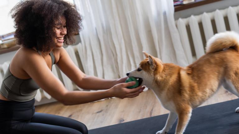 Eine Frau spielt mit einem Hund.